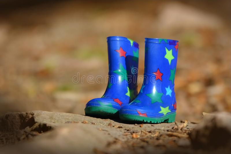 Kleine blauwe kinderenrubberlaarzen met kleurrijke sterren die in autum het bos surronding staning stock foto's