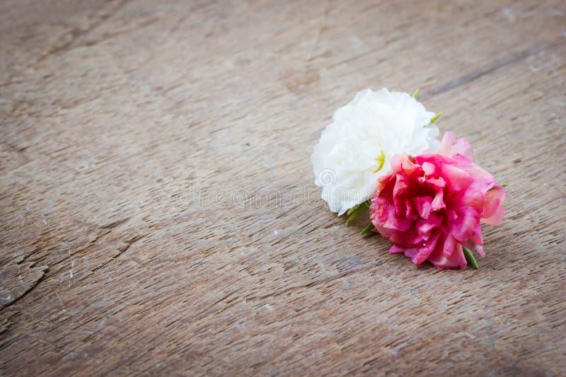 Kleine bloem op houten achtergrond royalty-vrije stock afbeeldingen