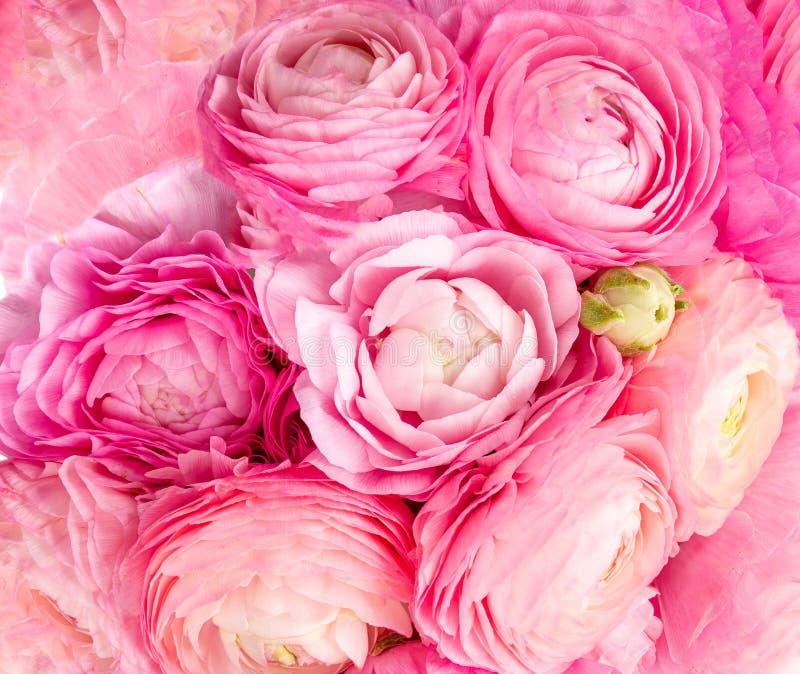 Kleine Blumenstr?u?e mit B?gen Strukturierter Hintergrund der rosa Ranunculusblumen Sommerblumentapete stockfotografie