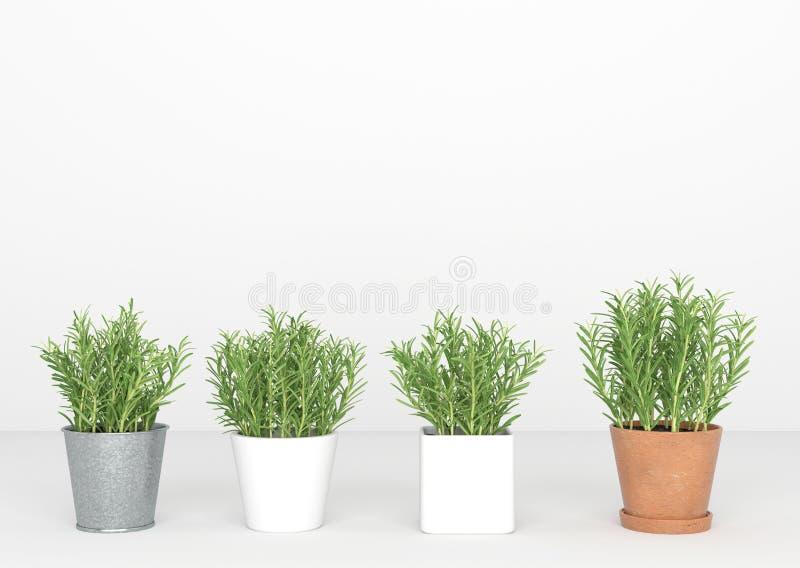 Kleine bomentribune in een geïsoleerde lijn, minimaal, vector illustratie