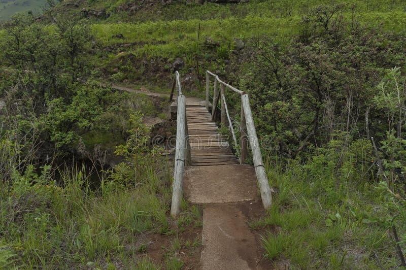Kleine Brücke von Bushmans-Fluss im Giants-Schloss-Kwazulu Natal Naturreservat stockbilder