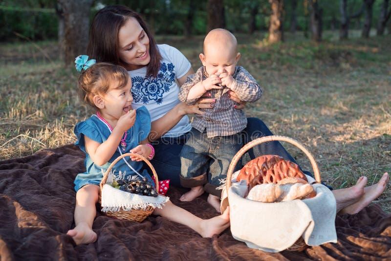 Kleine broers en zusjes met eetlust zoete pasteien Familie picknick in de tuin vanavond stock foto's