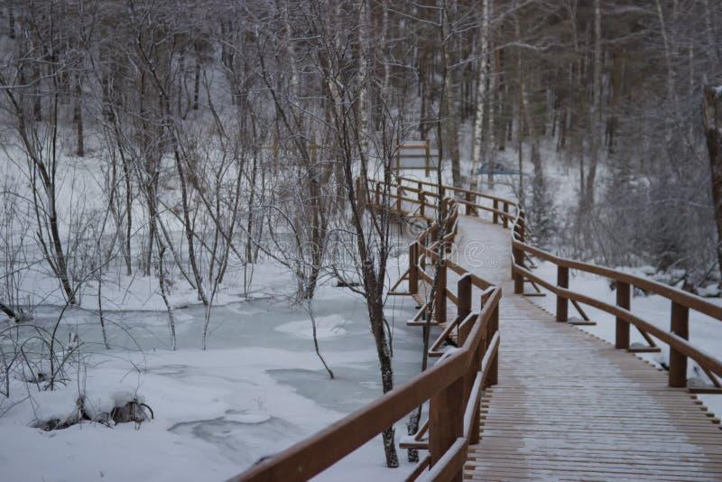 Kleine brug over de kreek, mooi de winterlandschap royalty-vrije stock foto