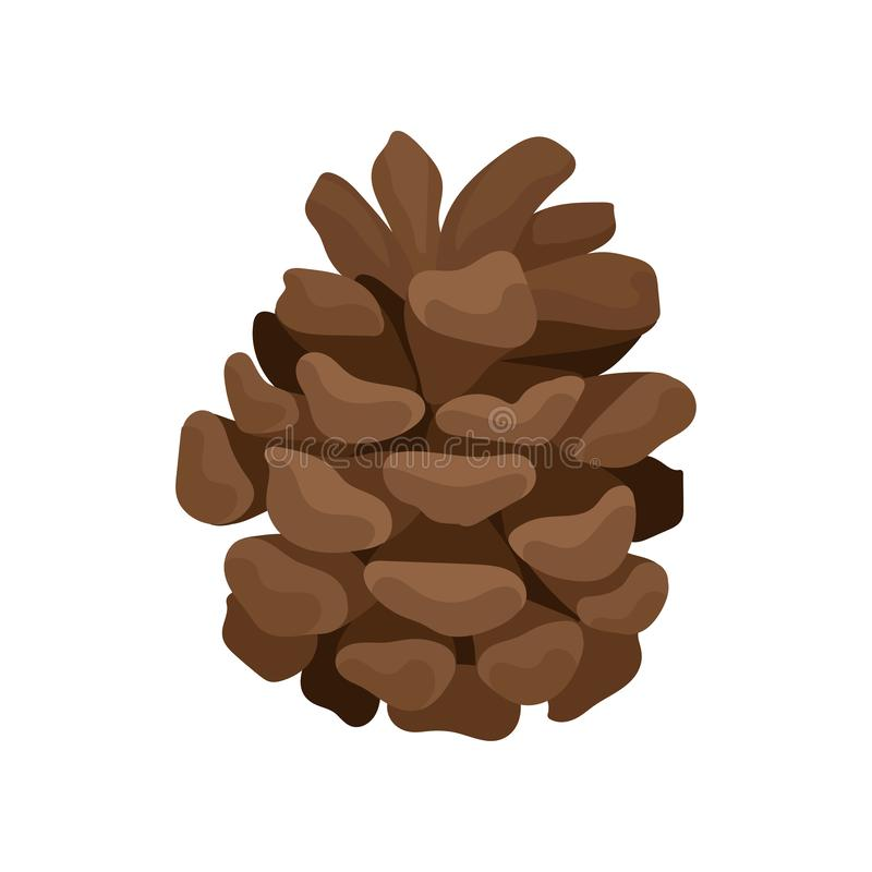 Kleine bruine denneappel Bosrijk fruit van naaldboomboom Element van bosinstallatie Vlakke vector voor Kerstmisprentbriefkaar stock illustratie
