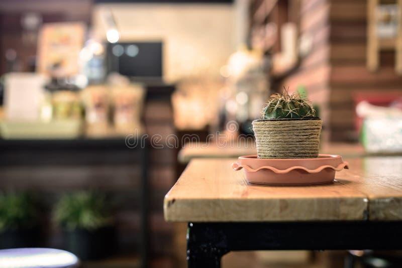 Kleine cactus op de lijst in koffiewinkel stock foto