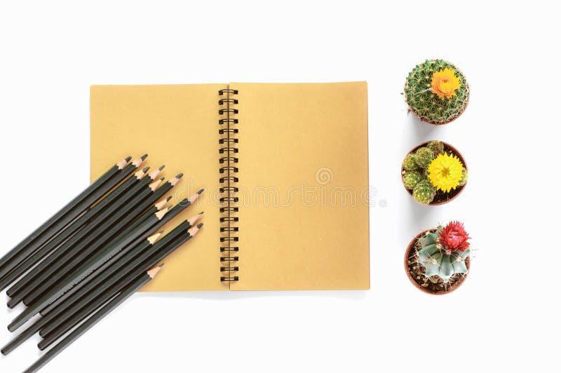 Kleine cactusinstallaties, blocnote en potloden op geïsoleerde witte backg stock afbeelding