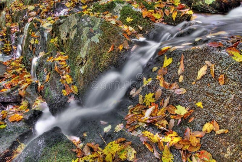 Kleine cascade stock afbeeldingen