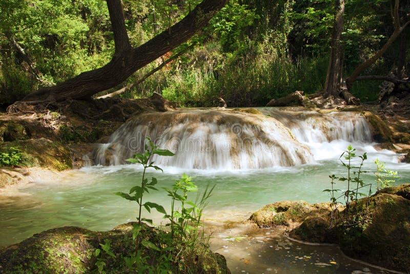 Kleine cascade in het bos stock fotografie