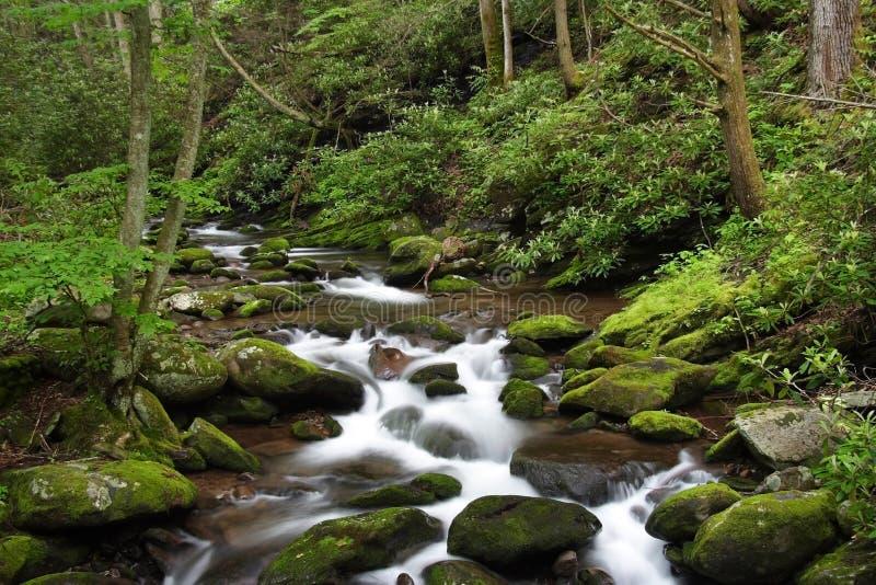 Kleine Cascades stock foto
