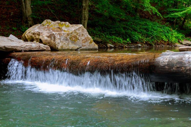 Kleine die bergwaterval met mos in het bos wordt behandeld stock fotografie