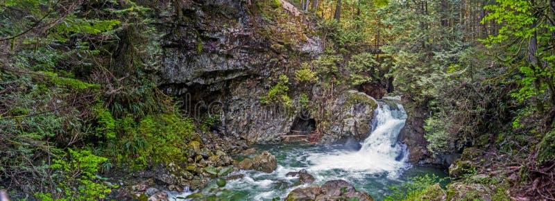 Kleine duidelijke waterval in het donkergroene de zomerbos royalty-vrije stock fotografie