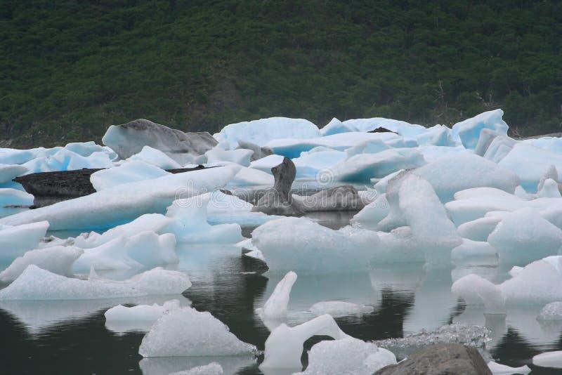 Kleine Eisberge stockbild