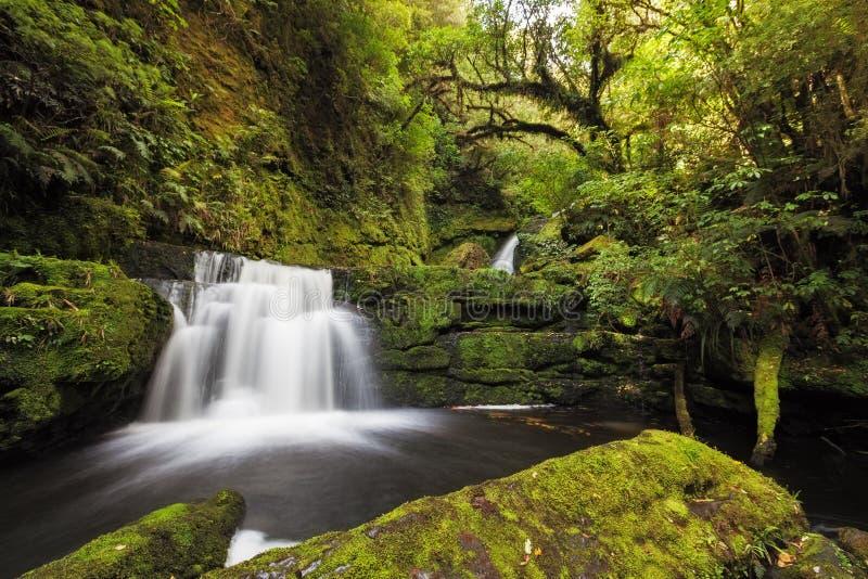 Kleine Fälle stromabwärts von Mclean fällt, Catlins, Neuseeland stockbild