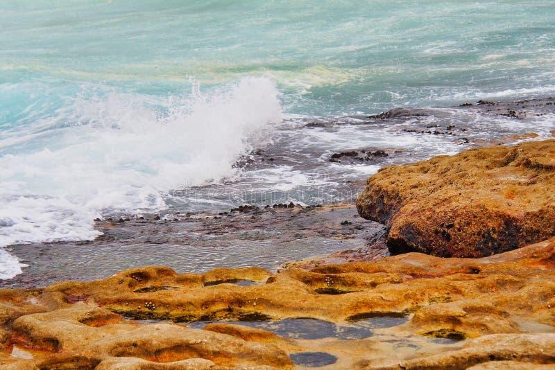 Kleine Felsen-Pools in Cratered Sandstein, Bondi-Strand, Australien stockbilder