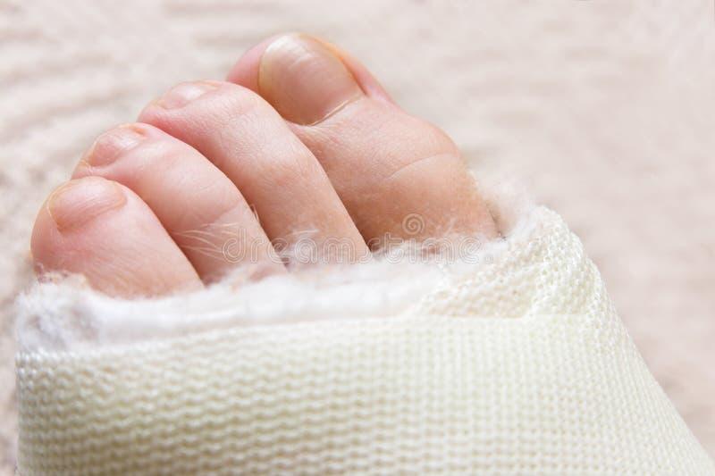 Kleine Finger. stockbild