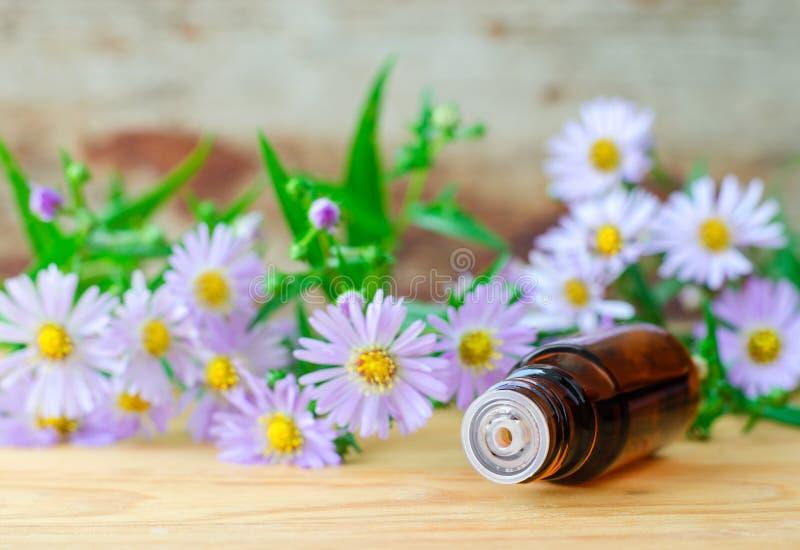 Kleine fles van het essentiële kruidenuittreksel van de aromaolie, tint, infusie, exemplaarruimte stock afbeeldingen