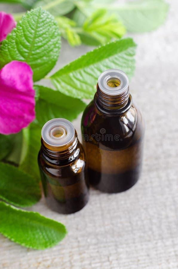 Kleine flessen natuurlijke kosmetische (essentiële) aromaolie stock afbeeldingen