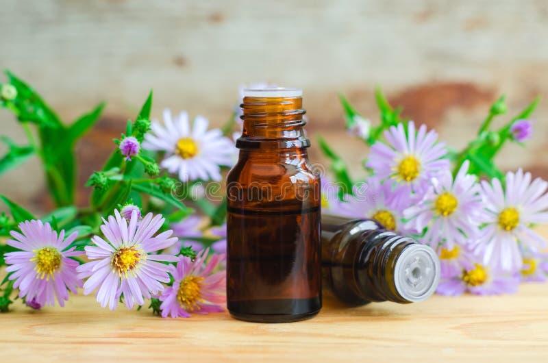 Kleine flessen van het essentiële kruidenuittreksel van de aromaolie, tint, infusie royalty-vrije stock afbeeldingen