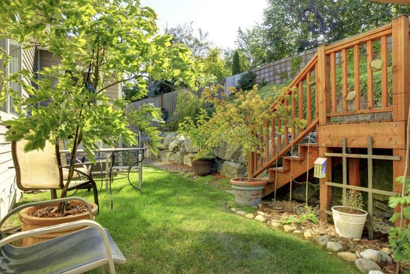 Kleine groene geschermde achtertuin met tuin stock afbeeldingen
