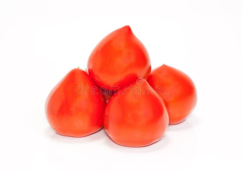Kleine Gruppe rote Tomaten stockfotografie