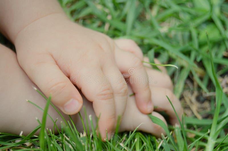 Kleine handen stock fotografie
