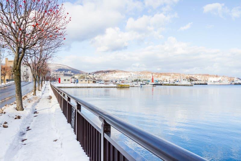 Kleine haven rond de stad van Otaru stock fotografie