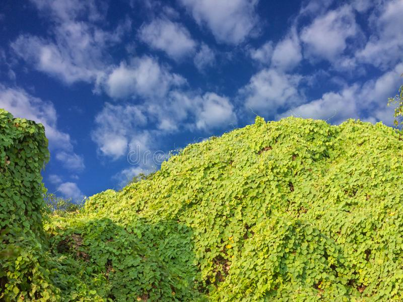 Kleine heuvel en blauwe hemel met wolken royalty-vrije stock fotografie