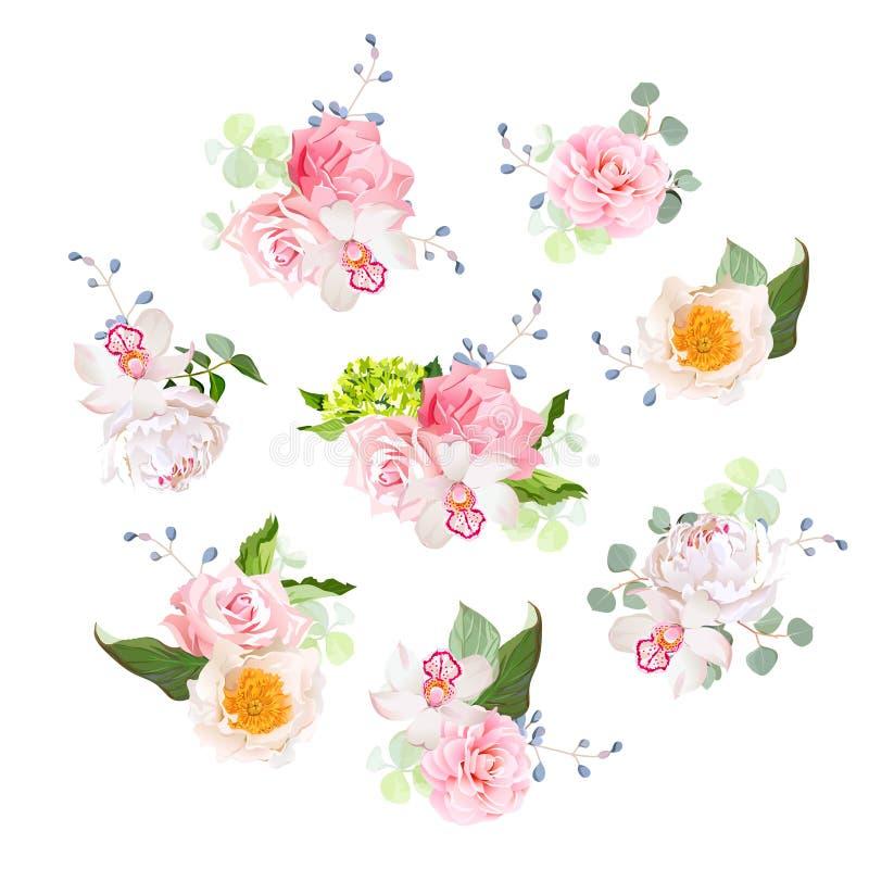 Kleine Hochzeitsblumensträuße von stiegen, Pfingstrose, Kamelie, Orchidee, Hortensie, Gartennelke, blaue Beeren und eucaliptis Bl stock abbildung
