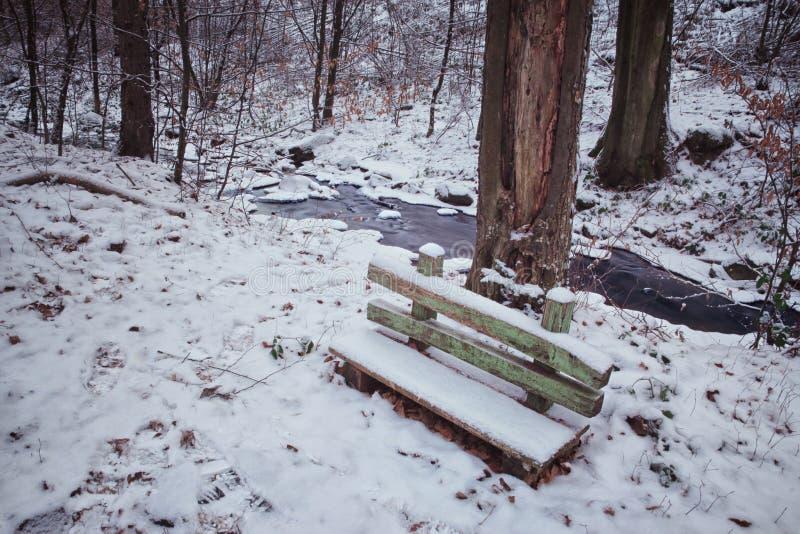 Kleine Holzbank im Wald lizenzfreie stockfotografie