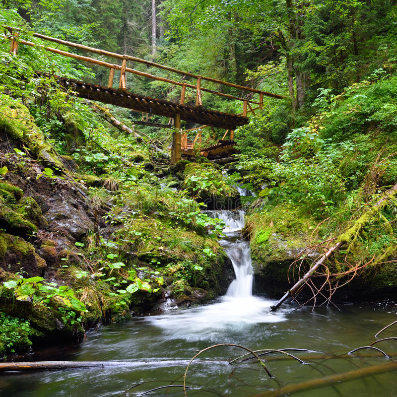 Kleine Holzbrücke, die über einem Gebirgsbach führt stockbild