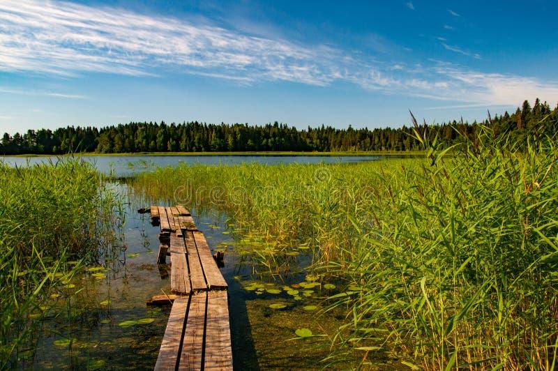 Kleine Holzbrücke in einen kleinen Fluss stockbilder
