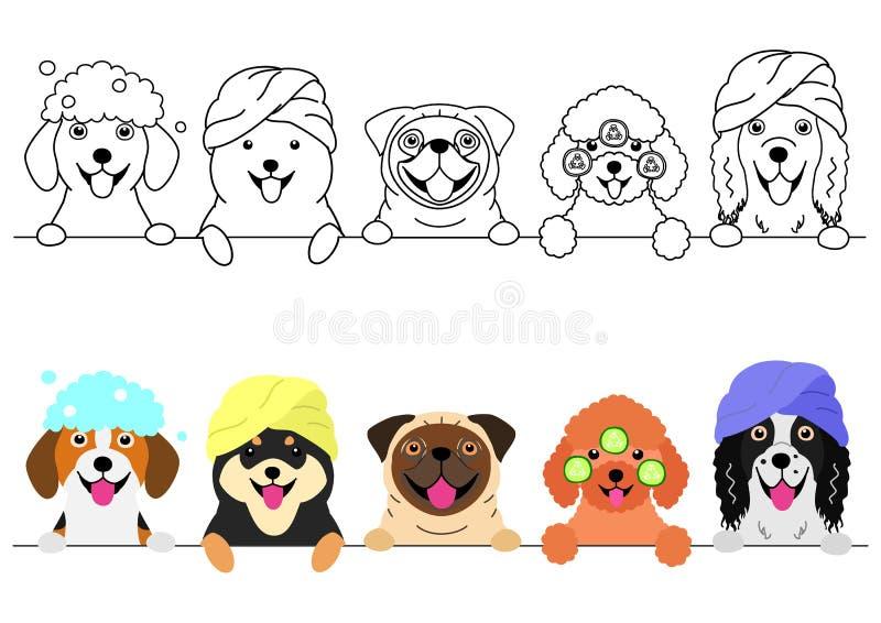 Kleine honden die van kuuroord op een rij genieten stock illustratie