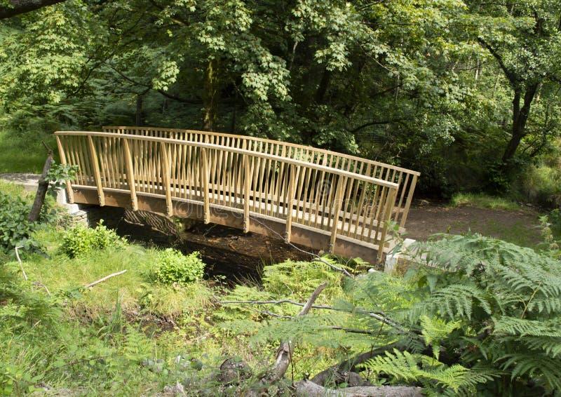 Kleine houten brug over stroom stock foto's