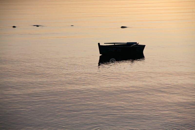Kleine houten het roeien boot op de oppervlakte van het zonsondergangzeewater stock fotografie