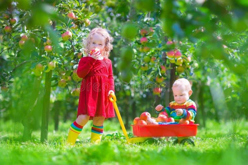 Kleine Kinder, die in einem Apfelgarten spielen stockbilder