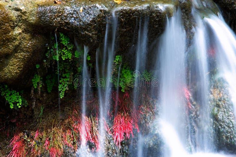 Kleine kleurrijke waterval in Spanje stock afbeeldingen