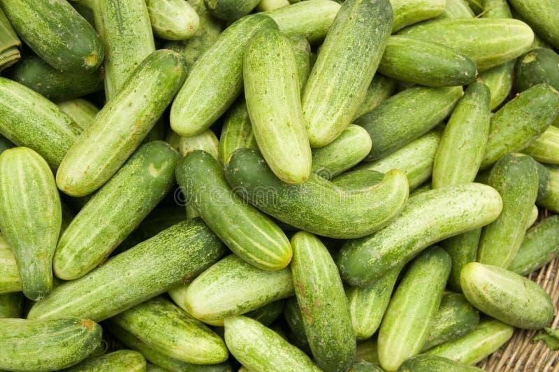 Kleine komkommers bij een Cambodjaanse Markt royalty-vrije stock afbeeldingen