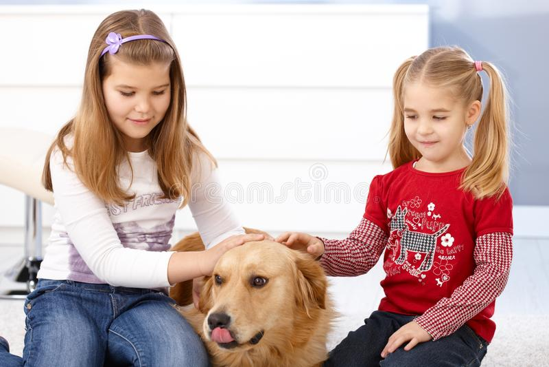Kleine Mädchen, die Hundedas lächeln streichen lizenzfreies stockfoto