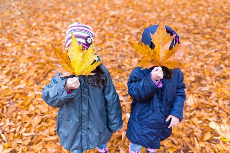 Kleine Mädchen mit einem versteckten Gesicht mit einem Ahornblatt in einem Herbst p lizenzfreie stockbilder