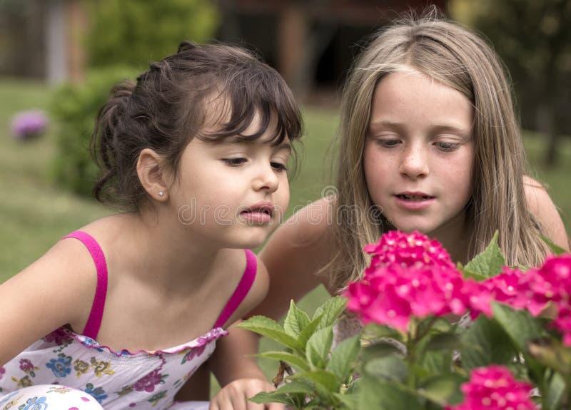 Kleine Mädchen-Portrait lizenzfreie stockfotografie