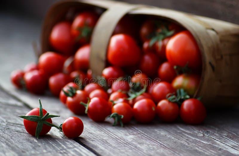 Kleine mand van oogst verse tomaat stock fotografie