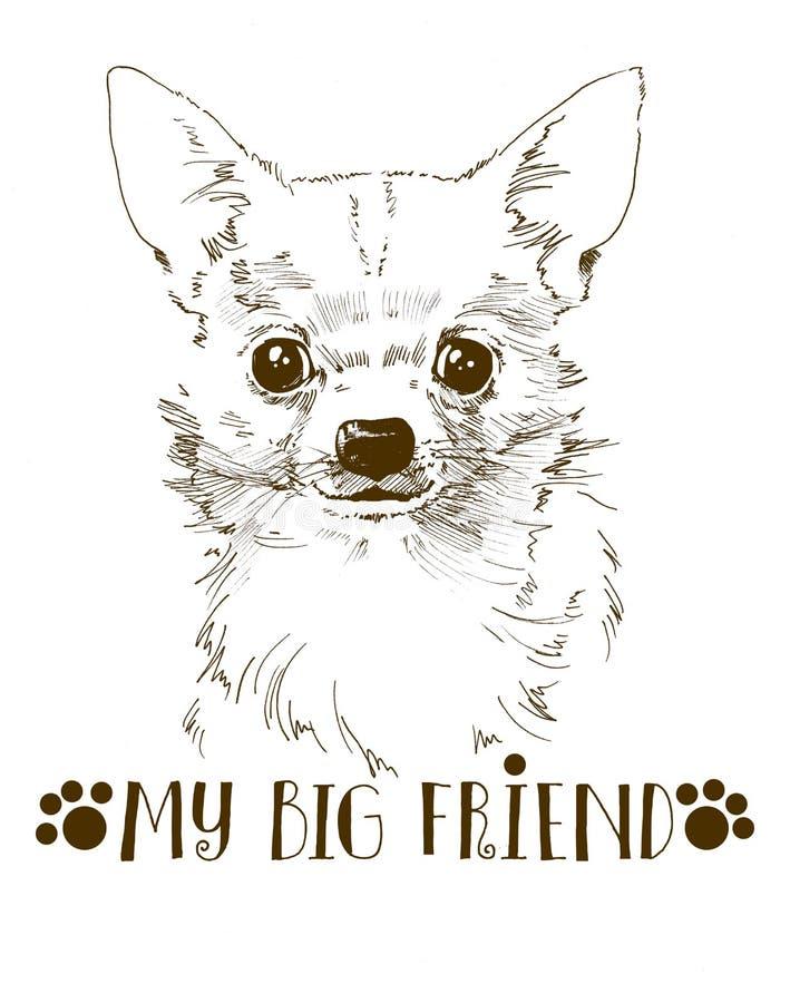 kleine nette gezeichnetes Porträt der Chihuahua Hand stock abbildung