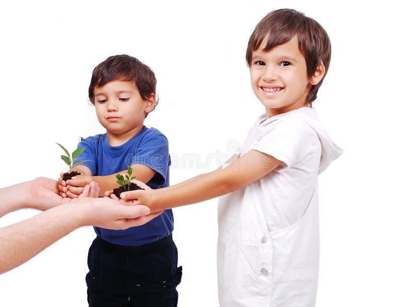 Kleine nette Kinder, die Grünpflanze anhalten lizenzfreies stockfoto