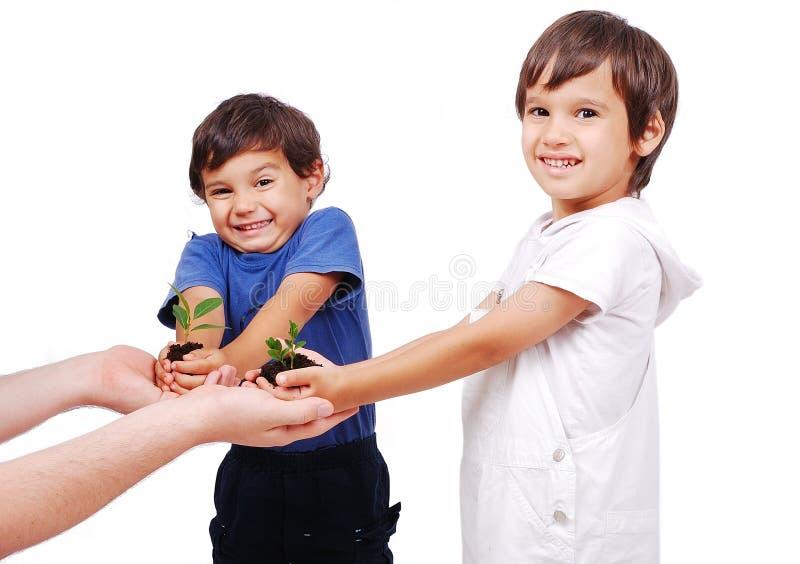 Kleine nette Kinder, die Grünpflanze anhalten lizenzfreies stockbild