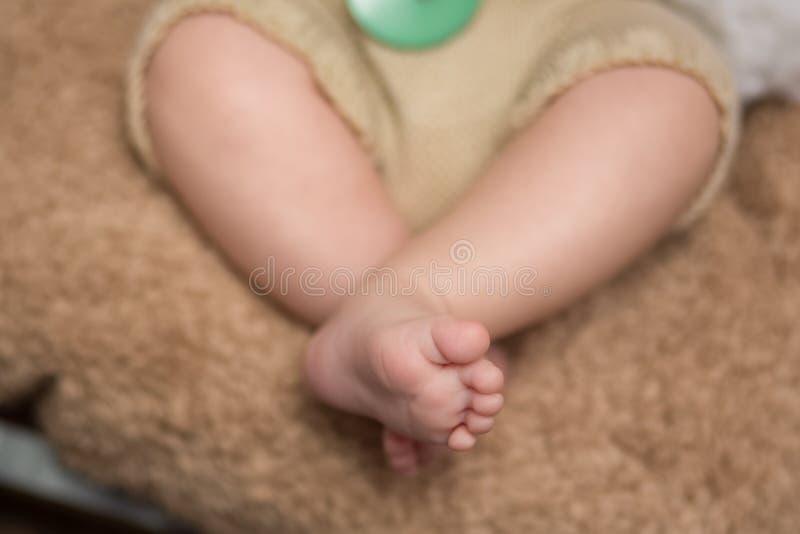 Kleine neugeborene Füße stockbild