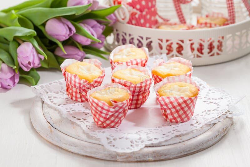 Kleine Quarkmuffins oder -kleine Kuchen stockfoto