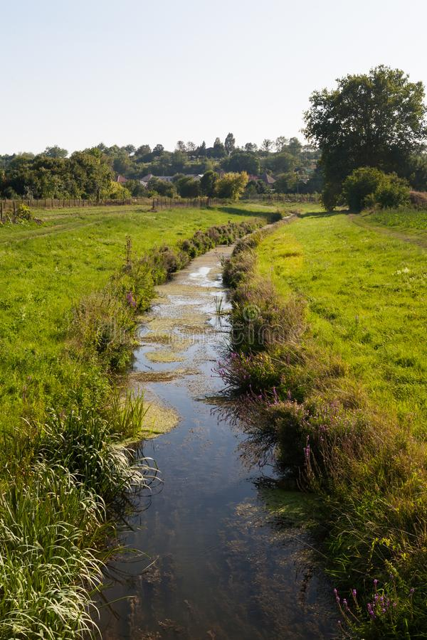 Kleine rivier in een landelijk milieu met bewaarde natuurlijke vegeta royalty-vrije stock afbeelding