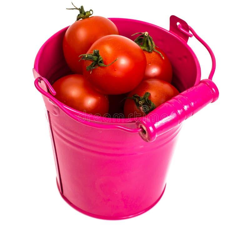 Kleine rode tomaten stock foto