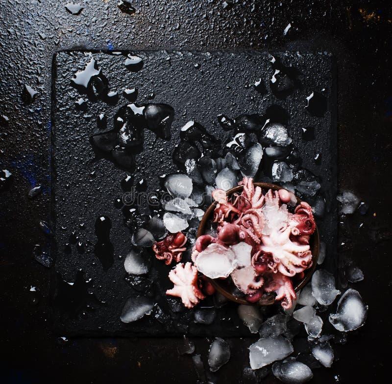 Kleine rode voorbereide octopus op verpletterd ijs, natte zwarte achtergrond, royalty-vrije stock fotografie