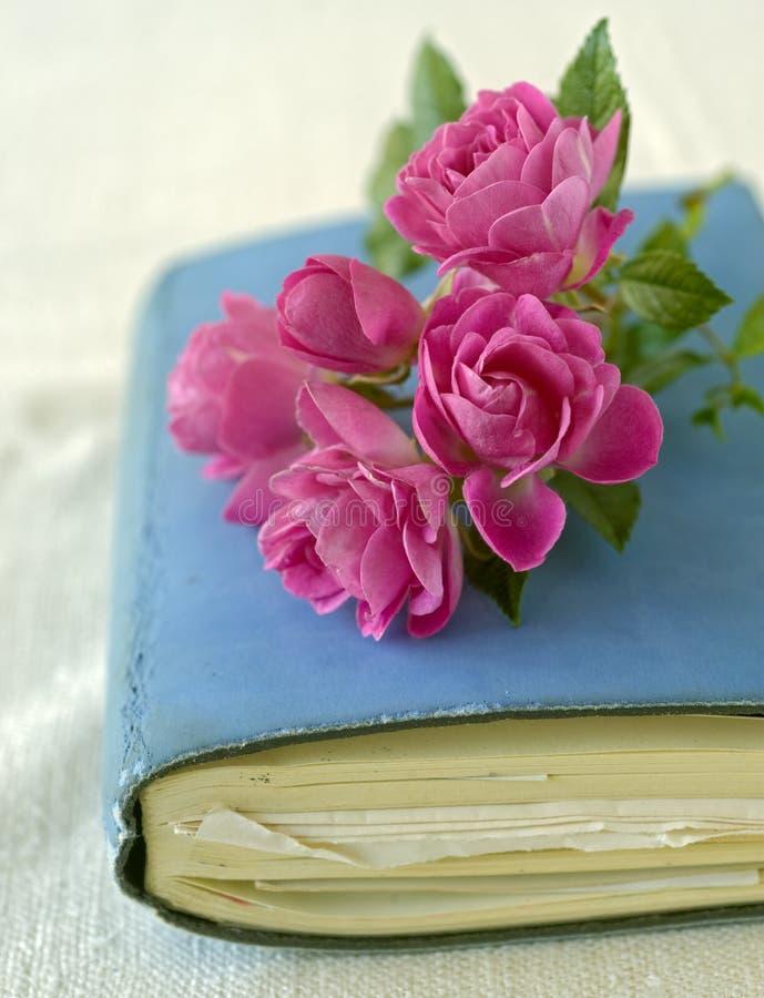 Kleine rozen op een agenda stock afbeelding